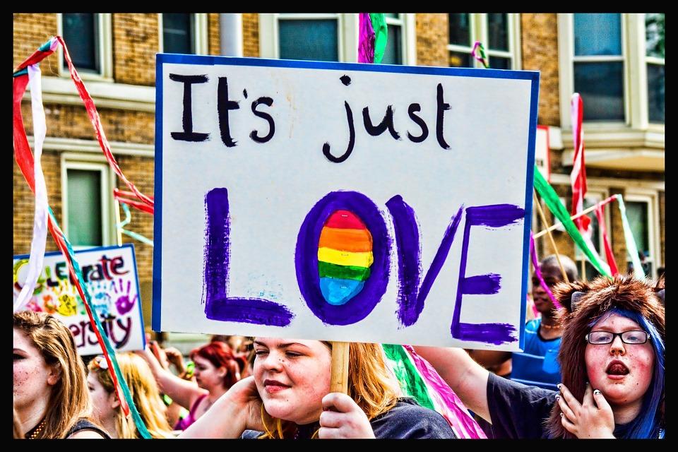 Spiral Dynamics : la gay pride, une manifestation du v-mème VERT